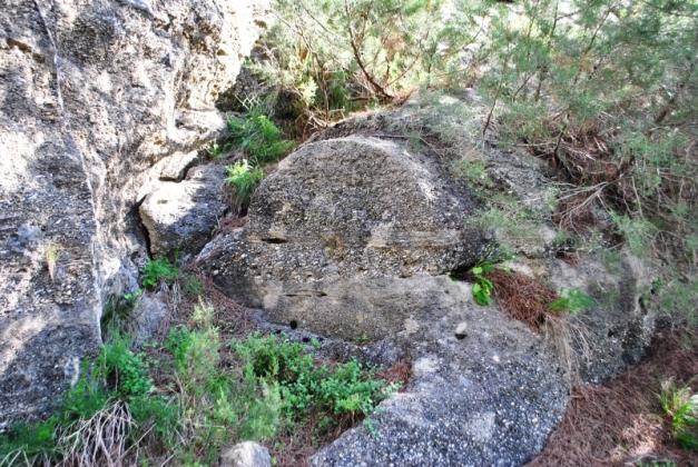 14. Tambor de columna semitallado