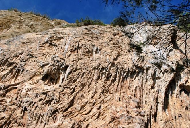 17. Calcarenita erosionada por las escorrentías
