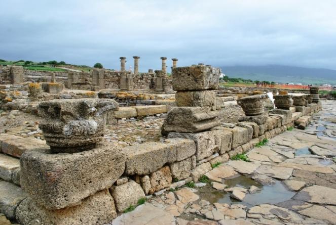 29. Otras piezas de calcarenita en Baelo Claudia