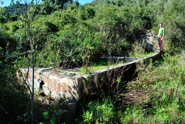 3. Pilar de la Alcarracilla