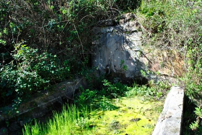 4.Pilar de la Alcarracilla
