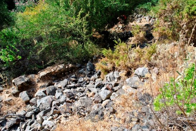 24. Alineamientos de piedras