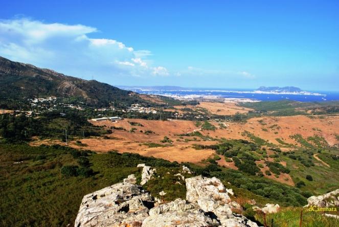 7. Pelayo y Algeciras.