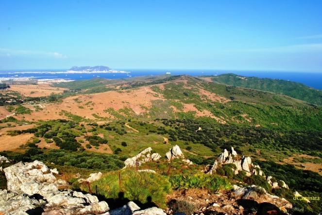 8. Montes de Getares.